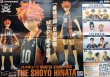 画像2: ハイキュー!! MASTER STARS PIECE THE SHOYO HINATA (2)